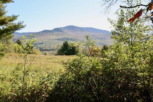 Photo 4 of this property for sale in Stowe, VT